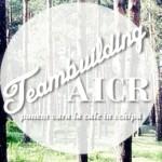 Teambuilding AICR (III) – punem vara la cale în echipă